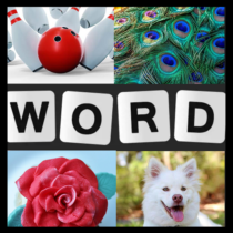 Word Picture IQ Word Brain Games Free for Adults  1.5.1 APK MODs (Unlimited Money) Download