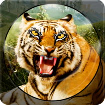 Forest Animal Hunting 2018 – 3D 1.2.4 APK Download