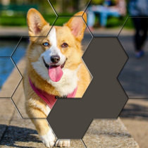 Hexa Puzzle Jigsaw: Anime Collection HD 1.13  APK Download