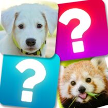 Memory Game: Animals 5.1 APK MODs (Unlimited Money) Download